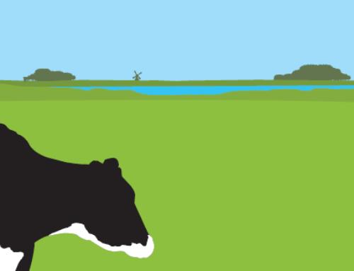 Meer weten over fosfaatrechten? Lees dan onze nieuwsbrief!